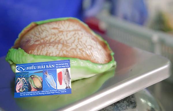 bào ngư úc viền xanh tách vỏ