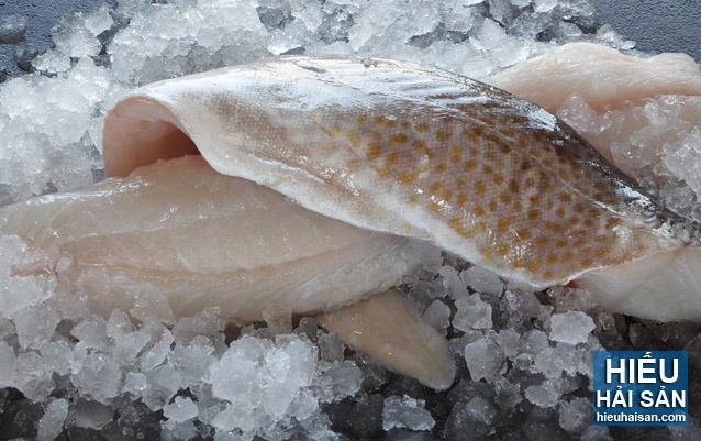 cá tuyết phi lê nauy