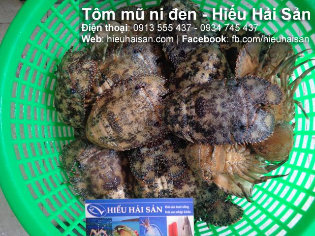 tôm mũ ni đen hiếu hải sản