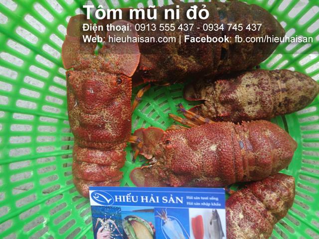 tôm mũ ni đỏ hiếu hải sản