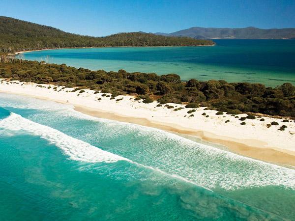 đảo tasmania úc