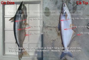 Làm sao phân biệt khô cá dứa hàng thật