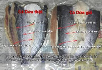 Khô cá dứa và cá tra khác nhau điểm gì