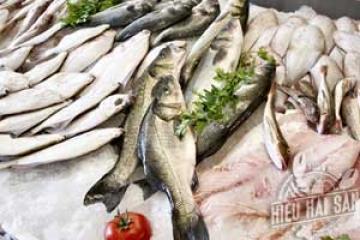 Làm sao ăn ngon ăn khoẻ với hải sản tươi sống
