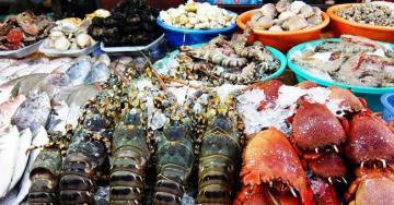 Tình trạng hải sản sau mưa lũ