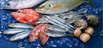 Những loại hải sản ngon nhất Việt Nam